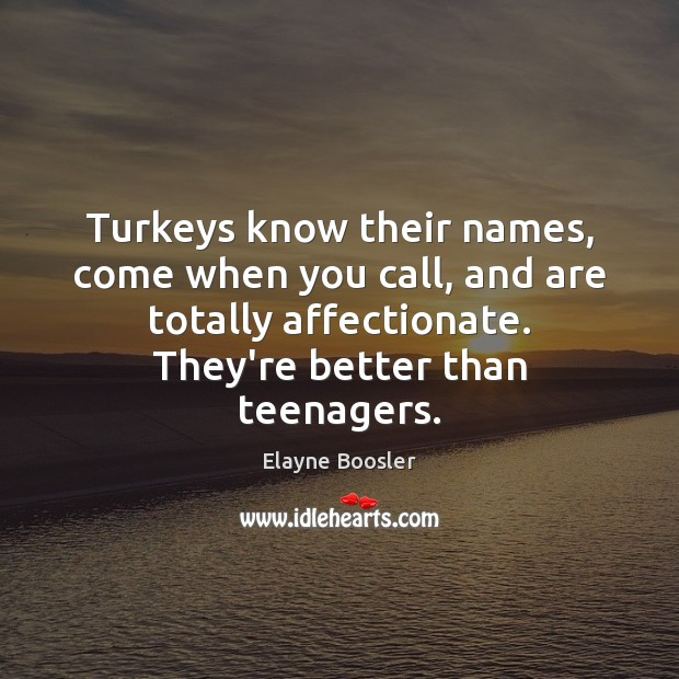 Turkeys know their names, come when you call, and are totally affectionate. Image