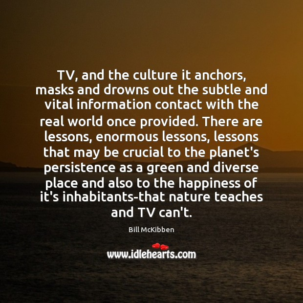 TV, and the culture it anchors, masks and drowns out the subtle Bill McKibben Picture Quote