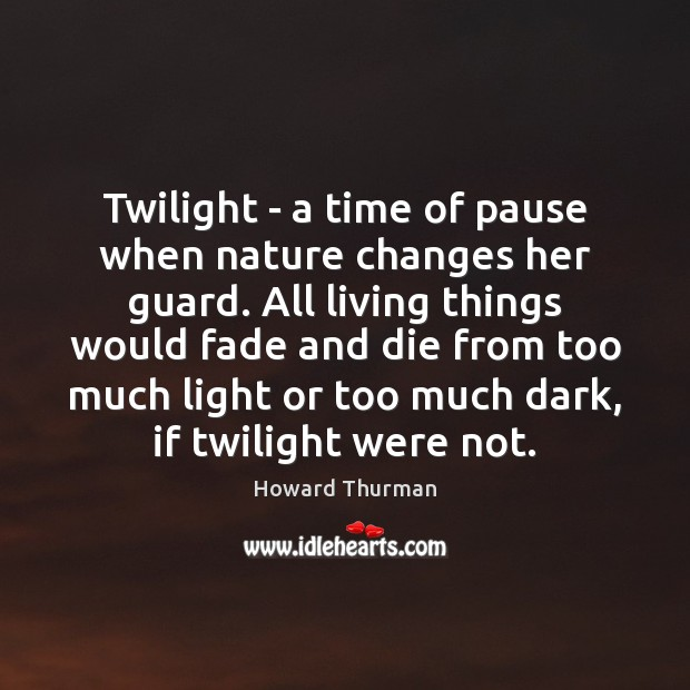 Twilight – a time of pause when nature changes her guard. All Image