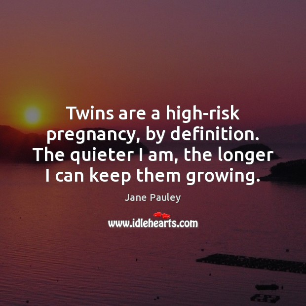 Twins are a high-risk pregnancy, by definition. The quieter I am, the Image