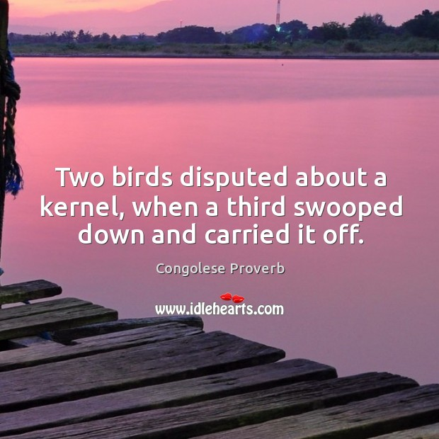 Two birds disputed about a kernel, when a third swooped down and carried it off. Congolese Proverbs Image