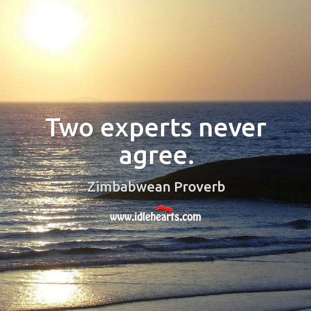 Two experts never agree. Zimbabwean Proverbs Image