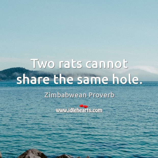 Two rats cannot share the same hole. Zimbabwean Proverbs Image