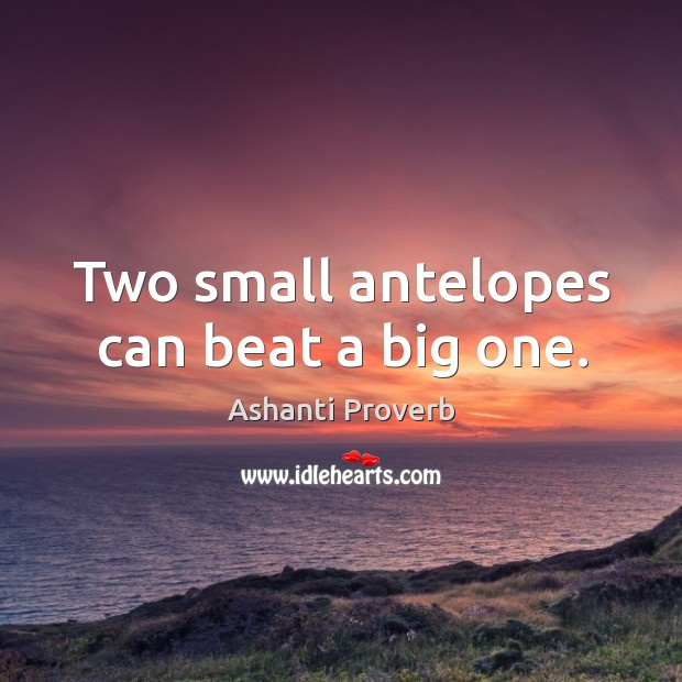 Two small antelopes can beat a big one. Ashanti Proverbs Image