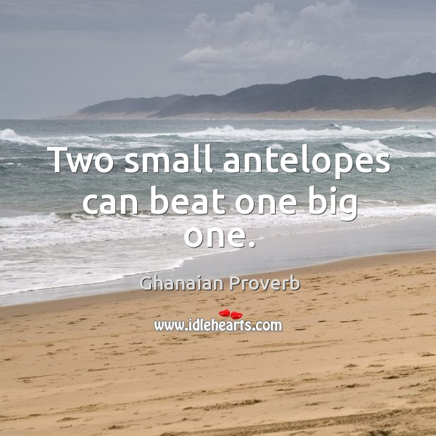 Two small antelopes can beat one big one. Ghanaian Proverbs Image