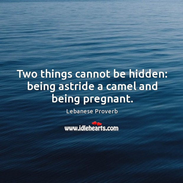 Two things cannot be hidden: being astride a camel and being pregnant. Lebanese Proverbs Image