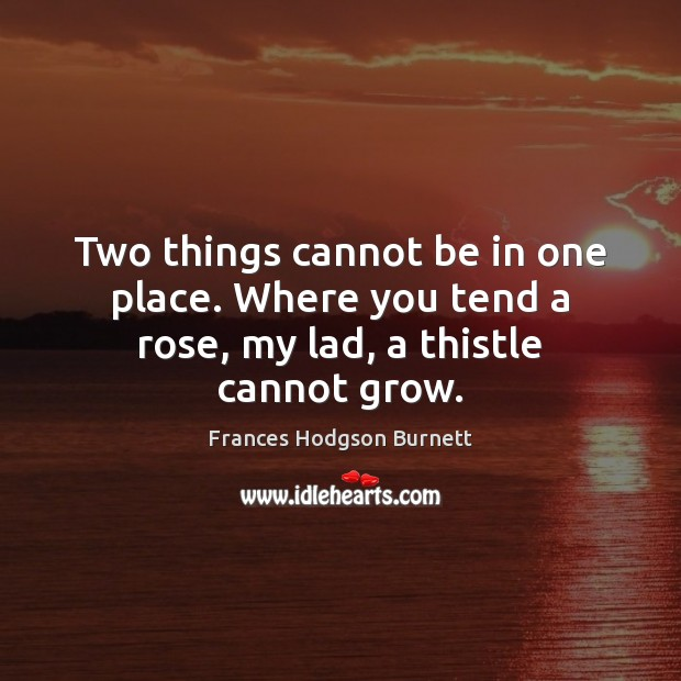 Two things cannot be in one place. Where you tend a rose, my lad, a thistle cannot grow. Frances Hodgson Burnett Picture Quote