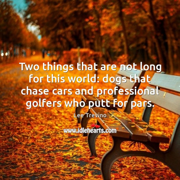 Two things that are not long for this world: dogs that chase Lee Trevino Picture Quote