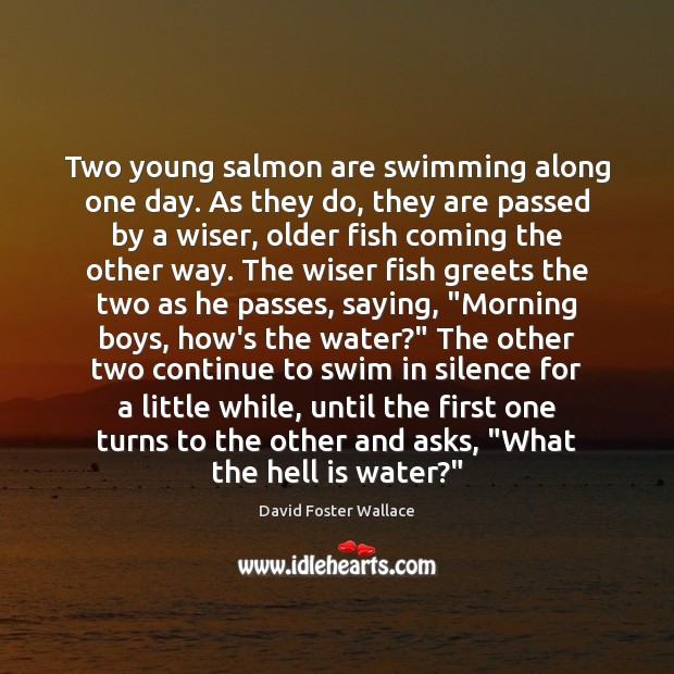 Two young salmon are swimming along one day. As they do, they David Foster Wallace Picture Quote