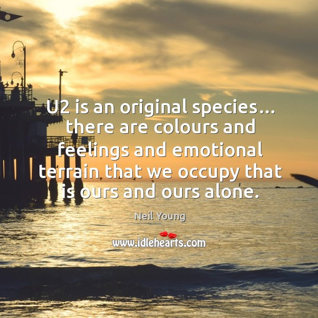 Image, U2 is an original species… there are colours and feelings and emotional