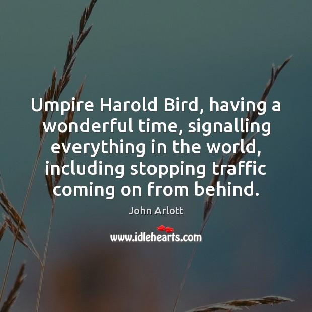 Umpire Harold Bird, having a wonderful time, signalling everything in the world, Image