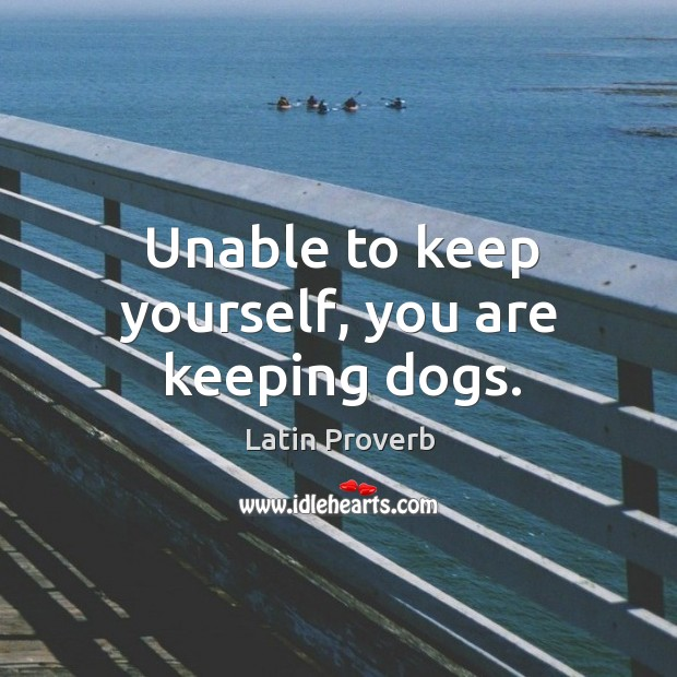 Image, Unable to keep yourself, you are keeping dogs.