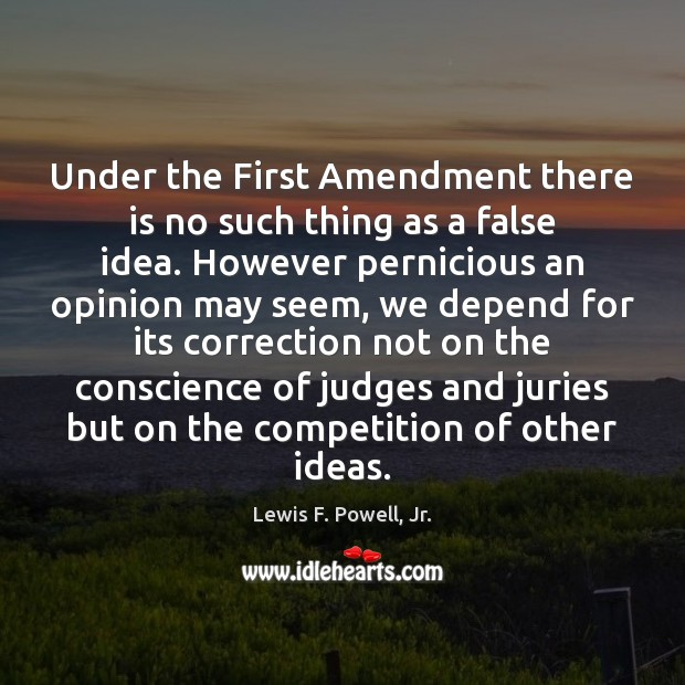 Under the First Amendment there is no such thing as a false Image