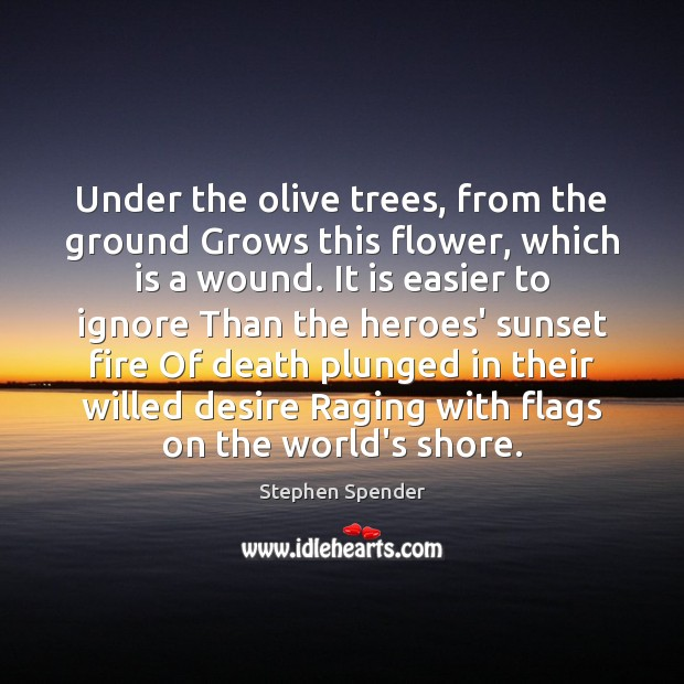 Under the olive trees, from the ground Grows this flower, which is Stephen Spender Picture Quote