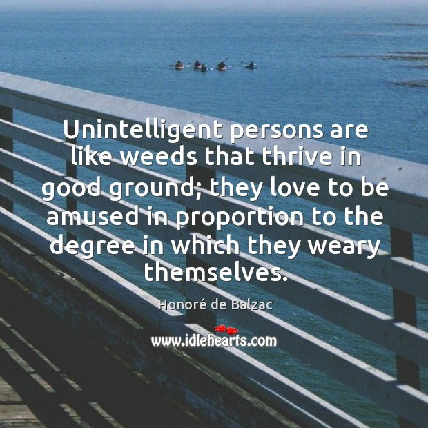 Image, Unintelligent persons are like weeds that thrive in good ground; they love to be amused