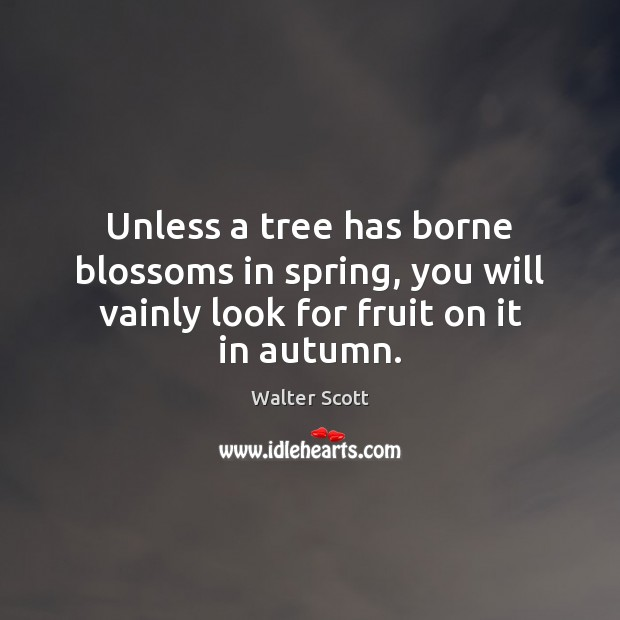 Unless a tree has borne blossoms in spring, you will vainly look Walter Scott Picture Quote