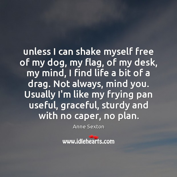 Image, Unless I can shake myself free of my dog, my flag, of