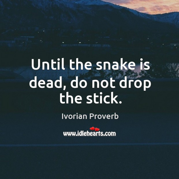 Until the snake is dead, do not drop the stick. Ivorian Proverbs Image