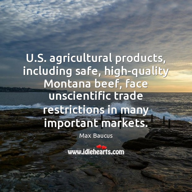 U.S. agricultural products, including safe, high-quality Montana beef, face unscientific trade Image