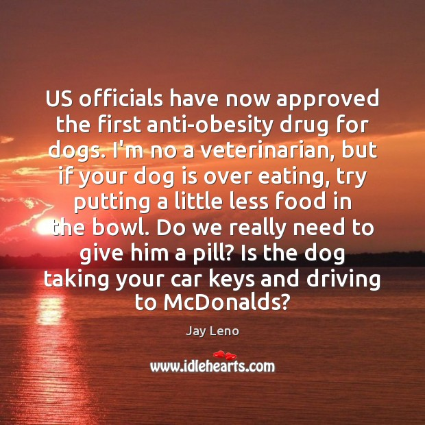 Image, US officials have now approved the first anti-obesity drug for dogs. I'm