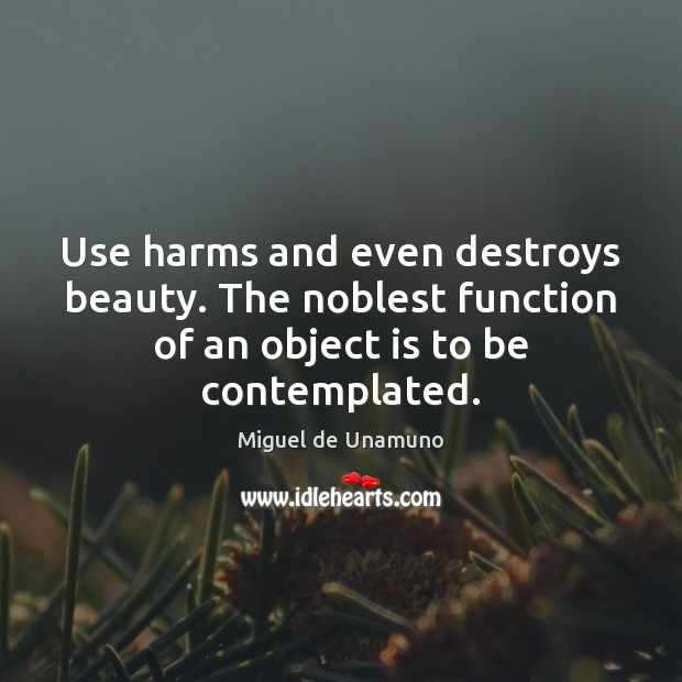 Use harms and even destroys beauty. The noblest function of an object Image