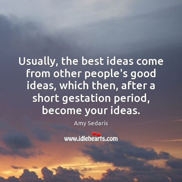 Usually, the best ideas come from other people's good ideas, which then, Amy Sedaris Picture Quote