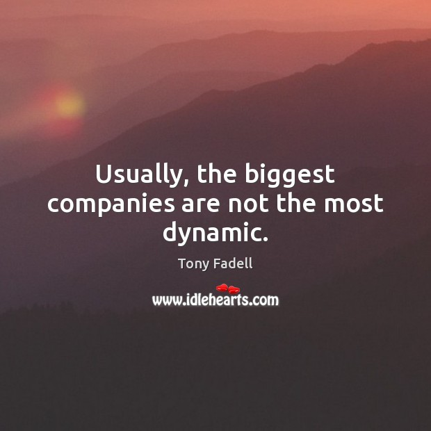 Image, Usually, the biggest companies are not the most dynamic.