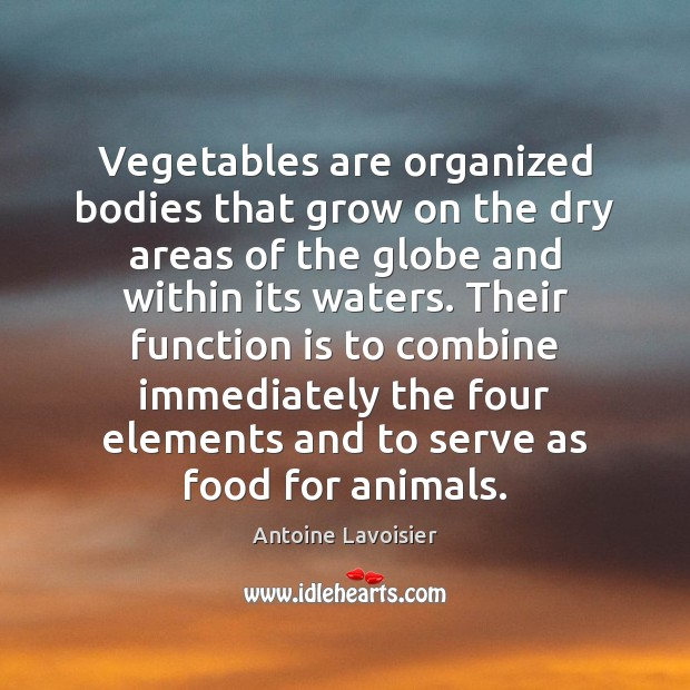 Vegetables are organized bodies that grow on the dry areas of the Serve Quotes Image