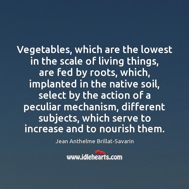 Vegetables, which are the lowest in the scale of living things, are Serve Quotes Image