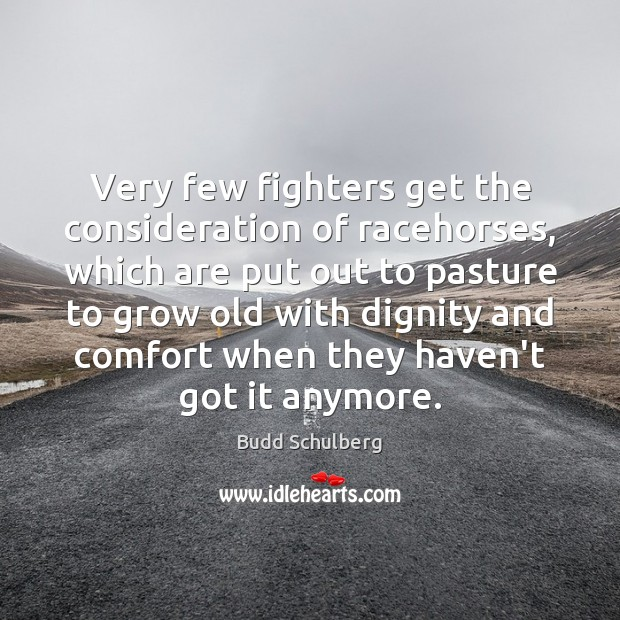 Image, Very few fighters get the consideration of racehorses, which are put out