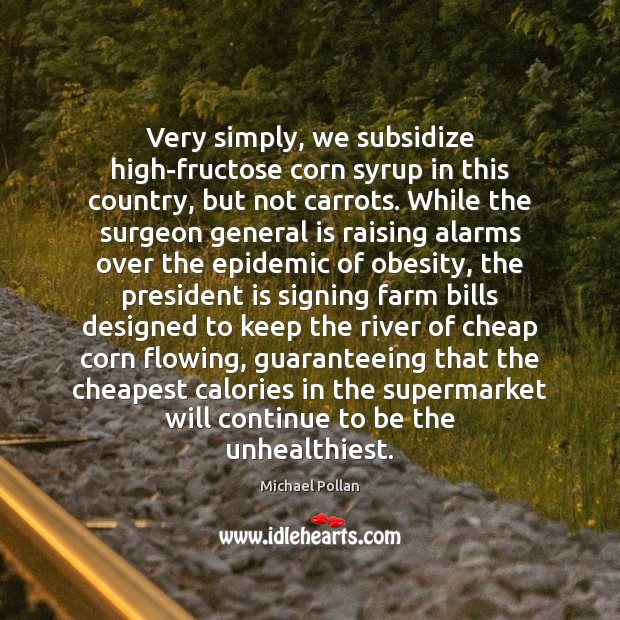 Image, Very simply, we subsidize high-fructose corn syrup in this country, but not