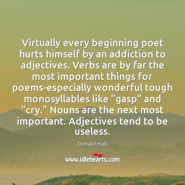 Image, Virtually every beginning poet hurts himself by an addiction to adjectives. Verbs