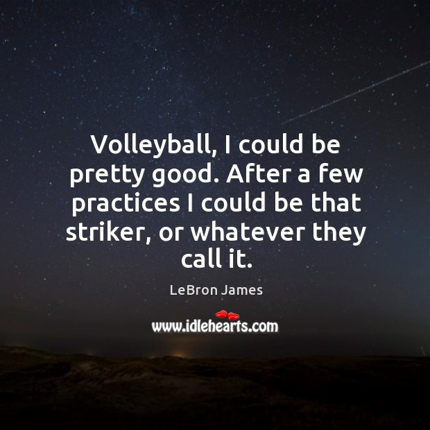 Volleyball, I could be pretty good. After a few practices I could be that striker, or whatever they call it. Image