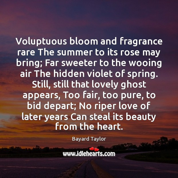 Voluptuous bloom and fragrance rare The summer to its rose may bring; Bayard Taylor Picture Quote