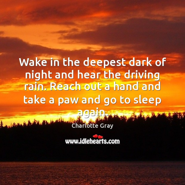 Wake in the deepest dark of night and hear the driving rain. Image