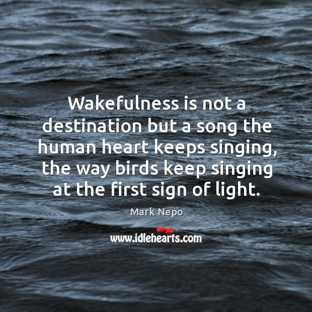 Wakefulness is not a destination but a song the human heart keeps Image