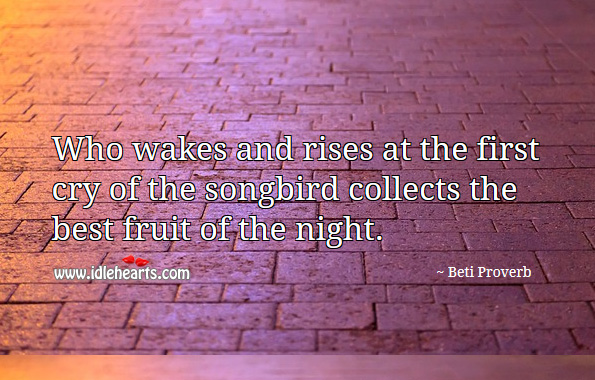 Who wakes and rises at the first cry of the songbird collects the best fruit of the night. Beti Proverbs Image