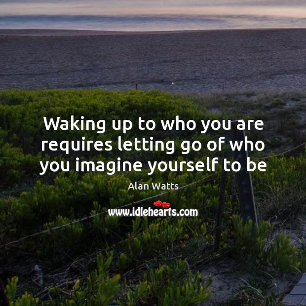 Waking up to who you are requires letting go of who you imagine yourself to be Alan Watts Picture Quote