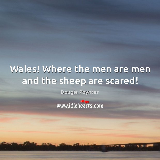 Wales! Where the men are men and the sheep are scared! Image