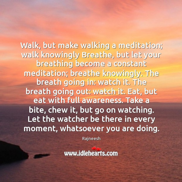 Image, Walk, but make walking a meditation; walk knowingly Breathe, but let your