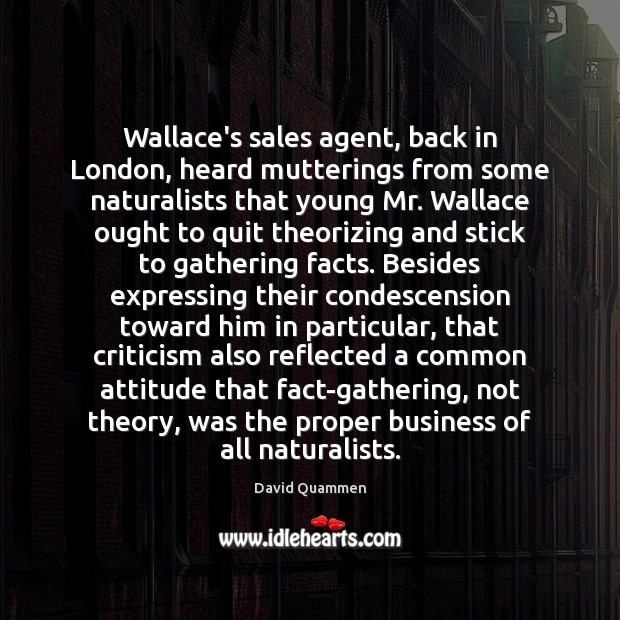 Image, Wallace's sales agent, back in London, heard mutterings from some naturalists that