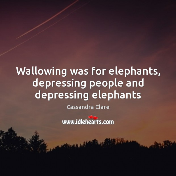 Wallowing was for elephants, depressing people and depressing elephants Image