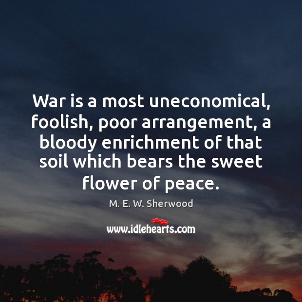 War is a most uneconomical, foolish, poor arrangement, a bloody enrichment of M. E. W. Sherwood Picture Quote