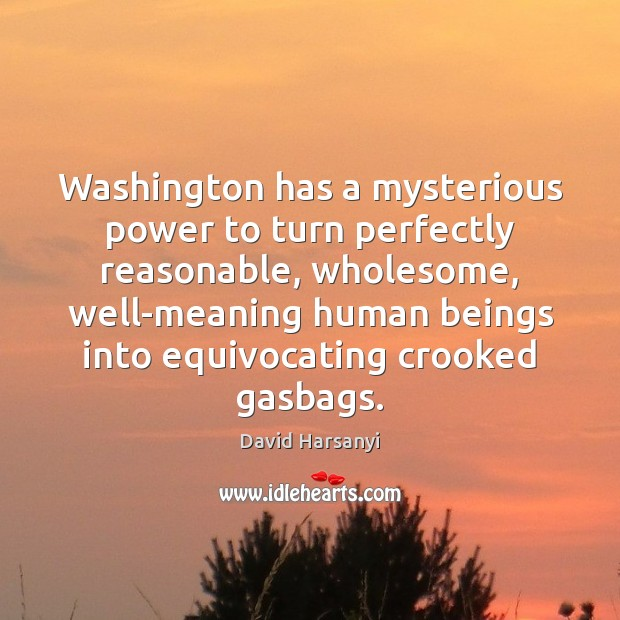 Washington has a mysterious power to turn perfectly reasonable, wholesome, well-meaning human David Harsanyi Picture Quote