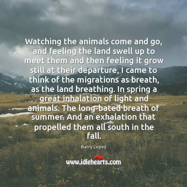 Watching the animals come and go, and feeling the land swell up Image