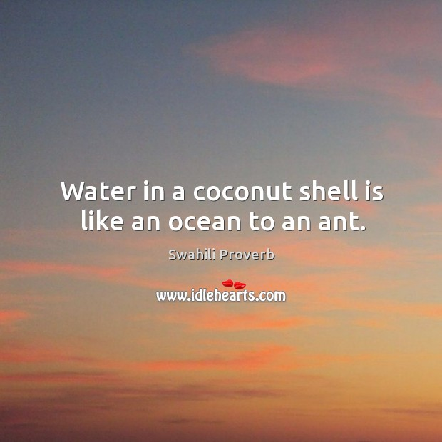 Water in a coconut shell is like an ocean to an ant. Image