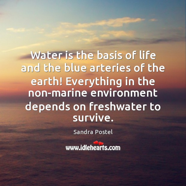 Image, Water is the basis of life and the blue arteries of the