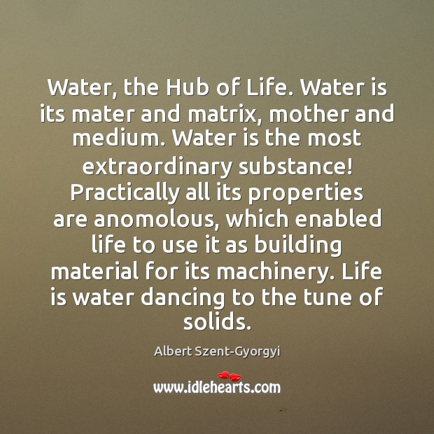 Image, Water, the Hub of Life. Water is its mater and matrix, mother