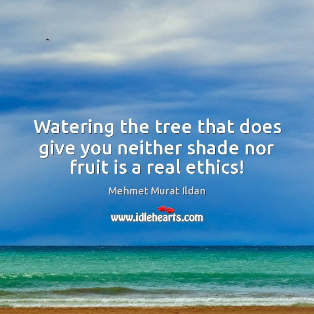 Image, Watering the tree that does give you neither shade nor fruit is a real ethics!