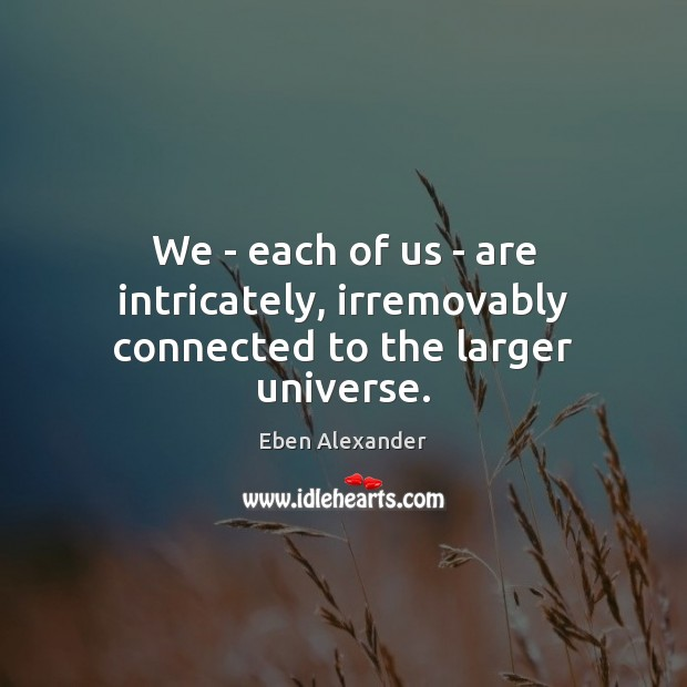We – each of us – are intricately, irremovably connected to the larger universe. Eben Alexander Picture Quote